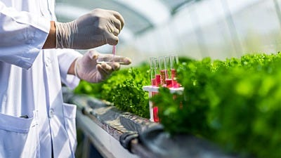 18 Need-to-Know Terms on Plant Nutrient Labels